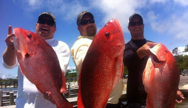 Emerald Coast Charters Pensacola Beach Fl pensacola beach fishing charters hampton inn